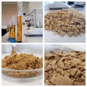 Planta extracción aceite de soja